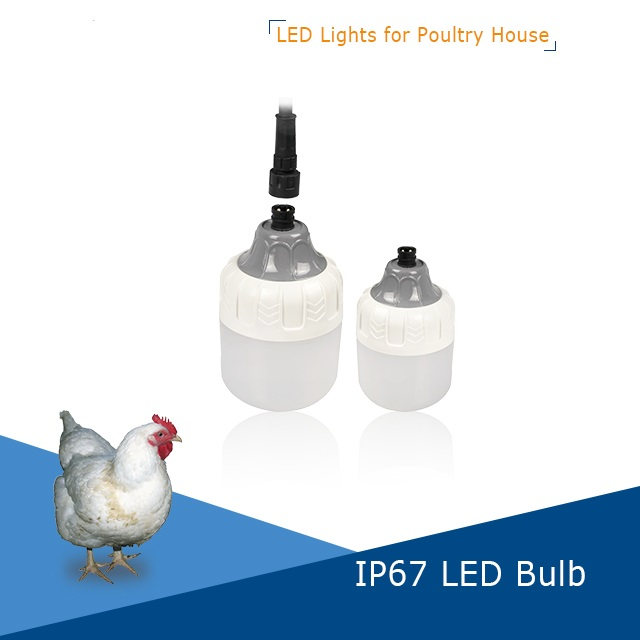 ip67 dimmable led poultry chicken bulb venusop led light bulbs