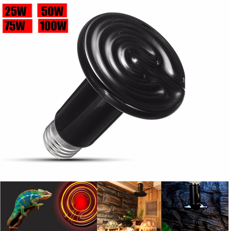 Black Pet reptile heat lamp bulb