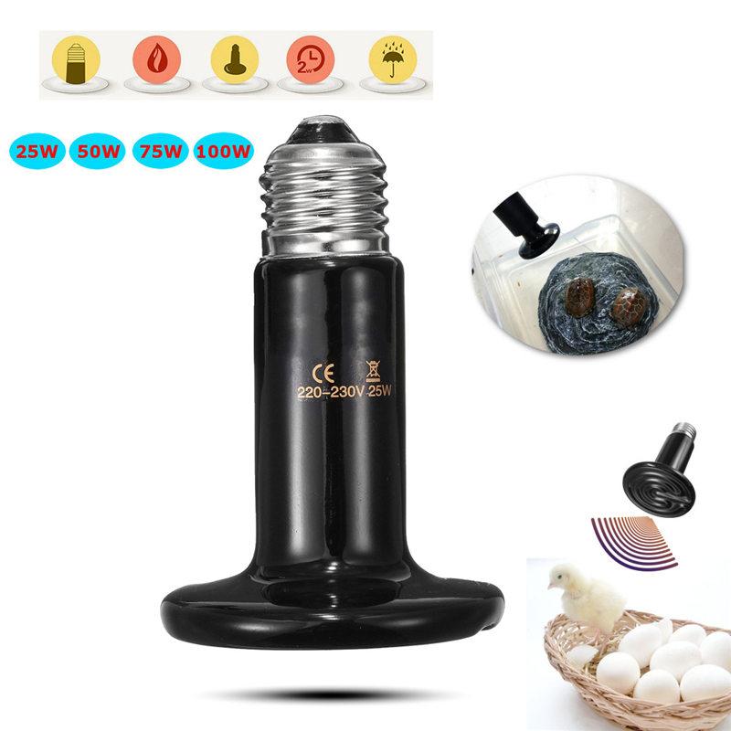 Black Pet reptile heat lamp bulb