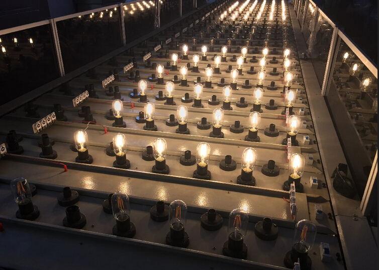 decorative light bulb supplier